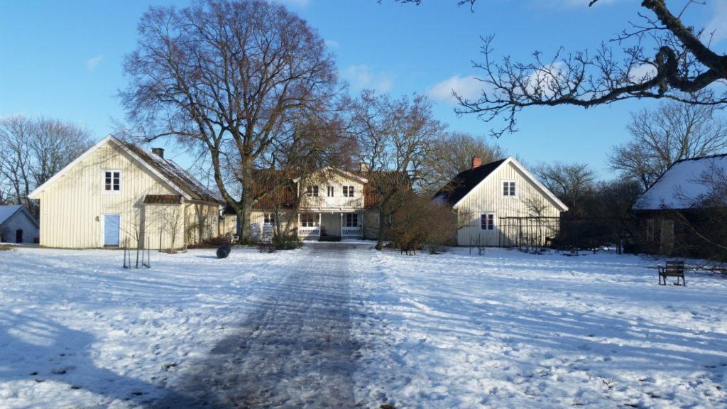 smultronet vinter